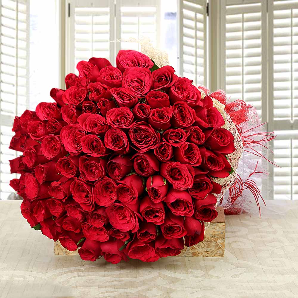 Valentine Roses-Love and Love