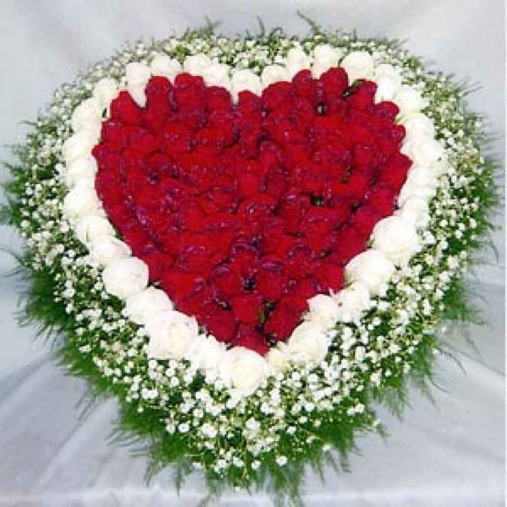 Red and White Roses in Heart Shape