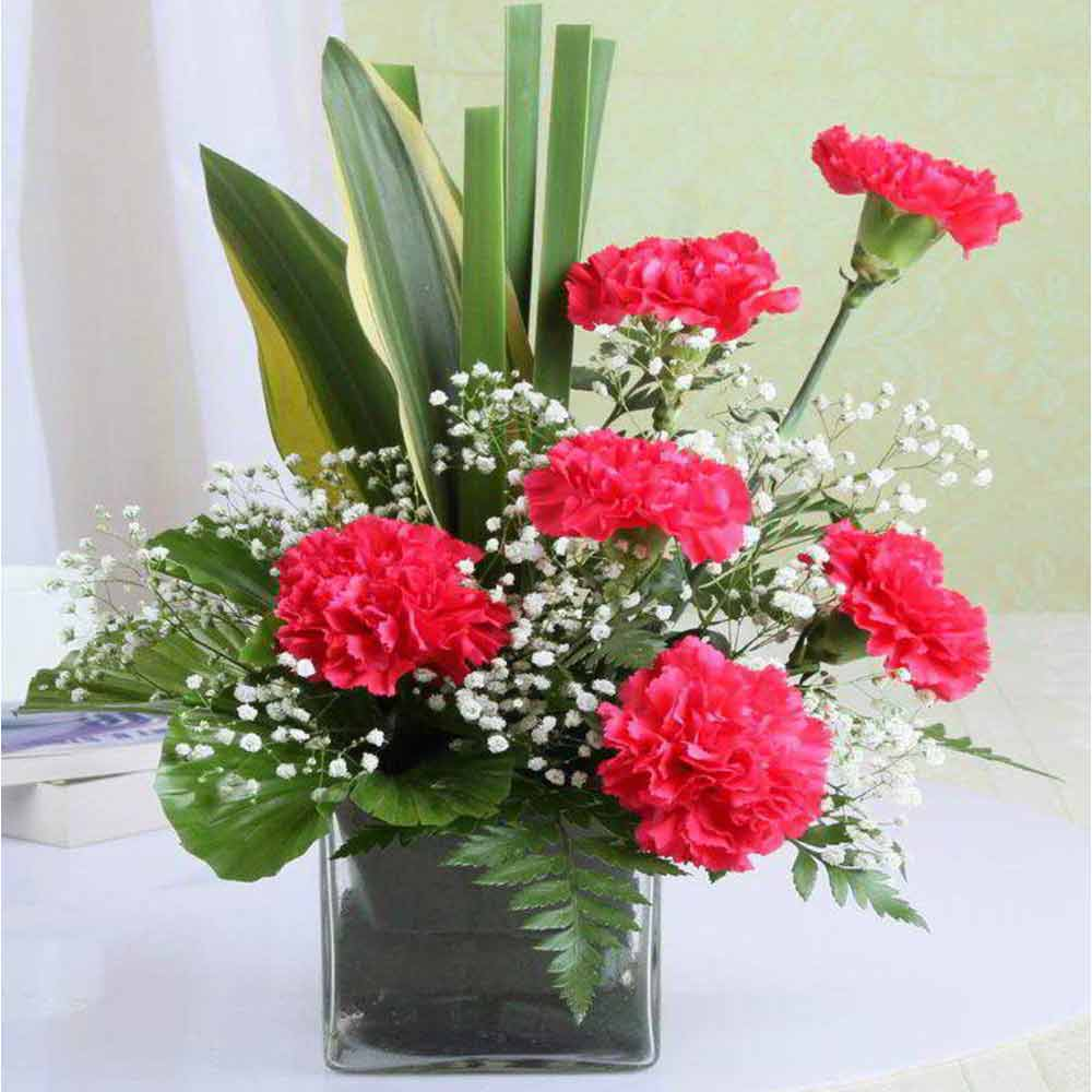 Valentine Vase of Six Pink Carnations