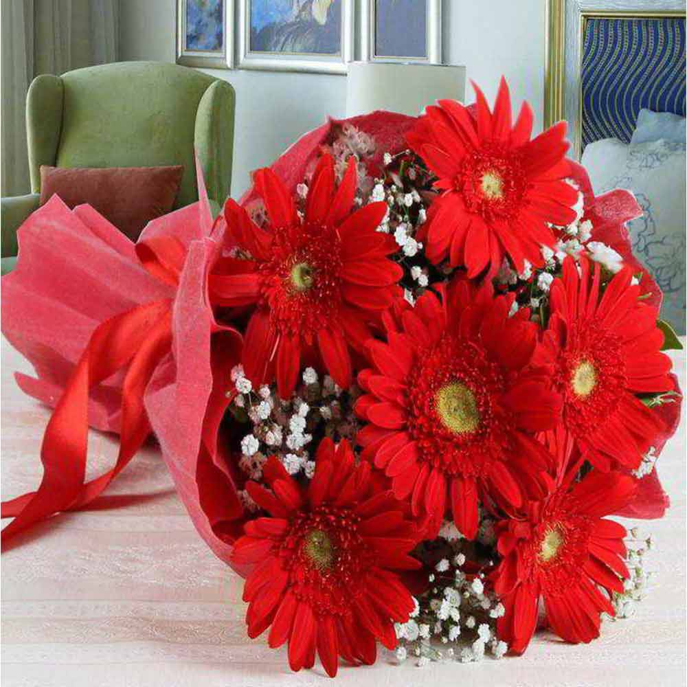 Valentine Roses-Bouquet of Red Gerberas in Tissue For Valentine