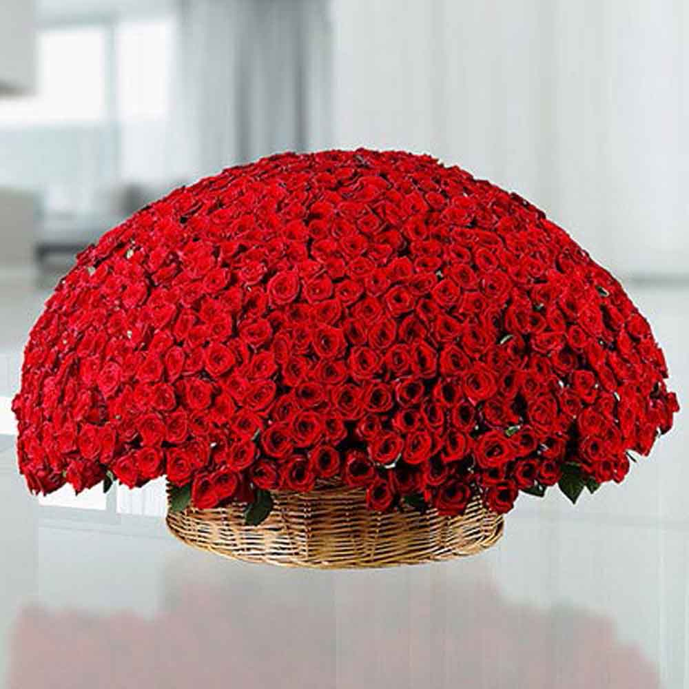 View 365 Red Roses Basket