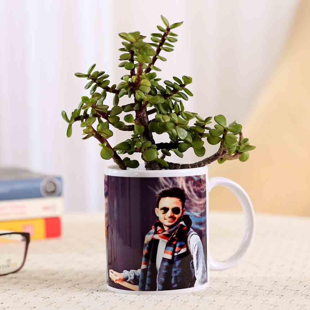 White Personalised Mug With Jade Plant