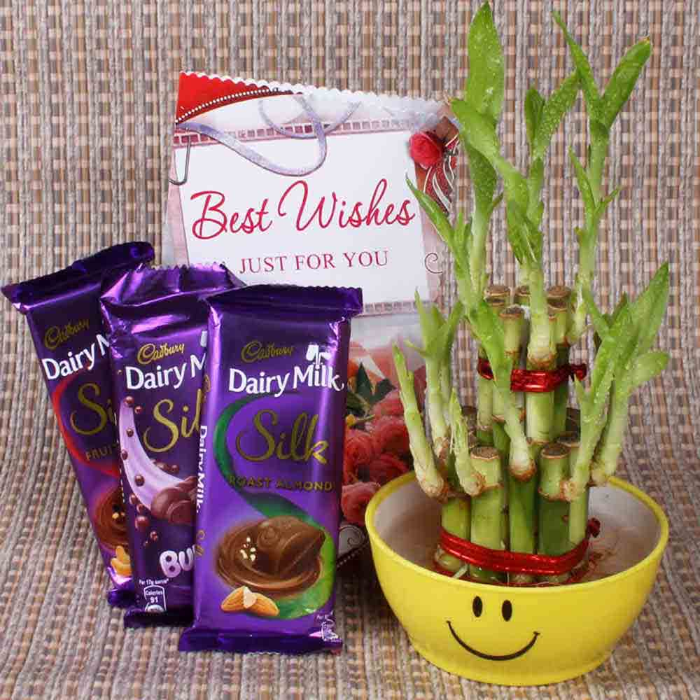 Best Wishes With Lucky Bamboo