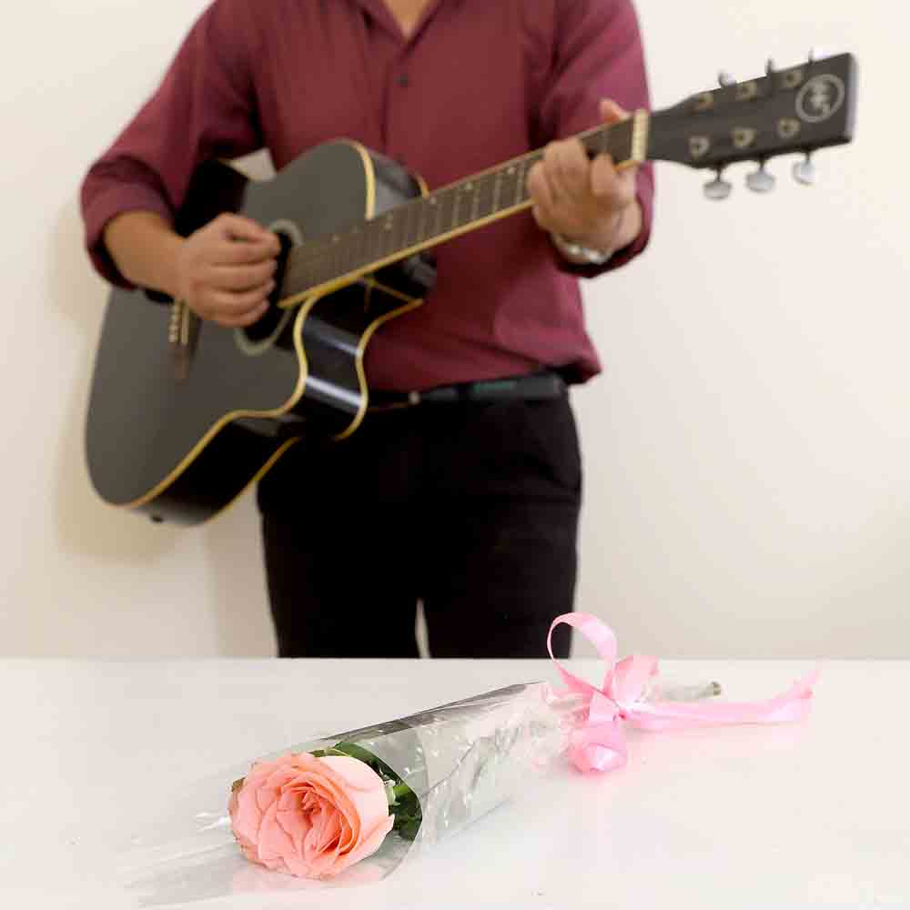 Single Pink Rose Musical Combo