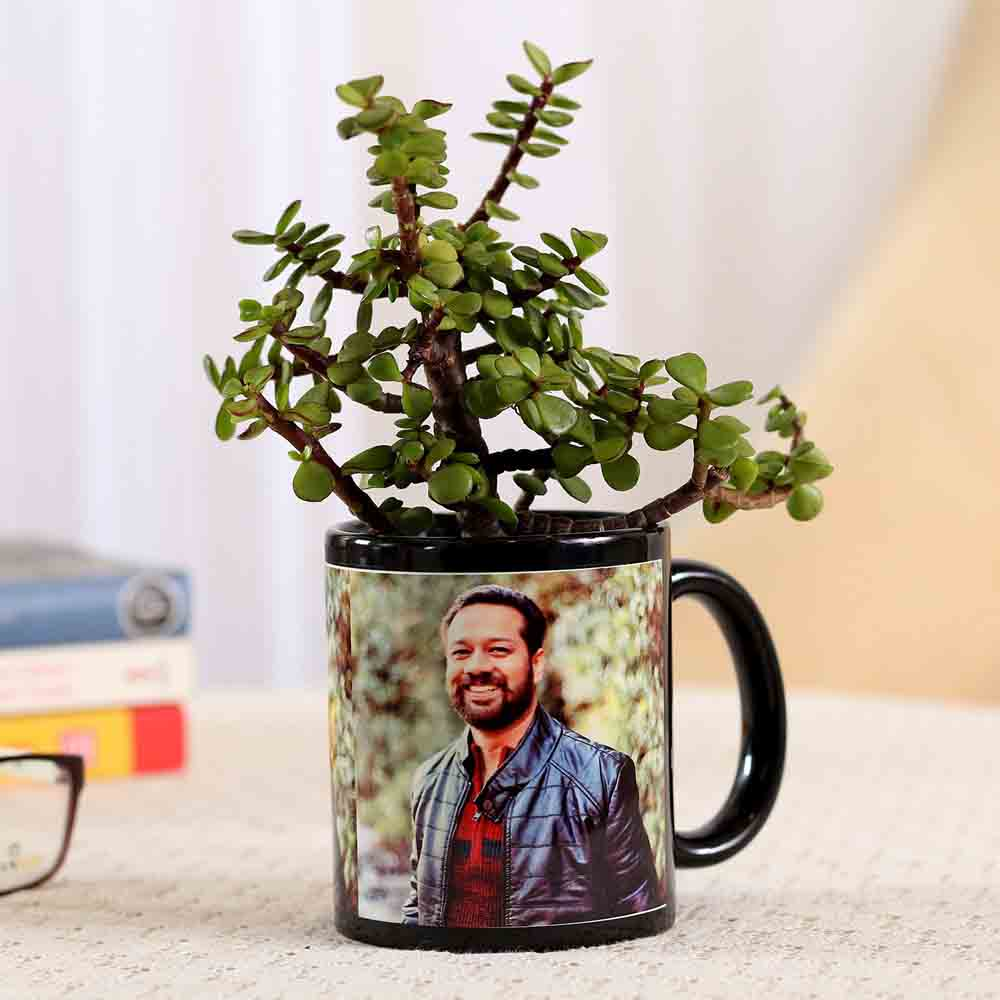 Jade Plant In Stylish Personalised Mug