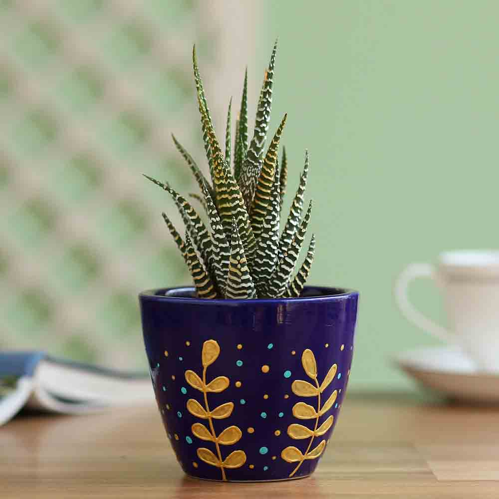Zebra Haworthia Plant In Hand Painted Planter