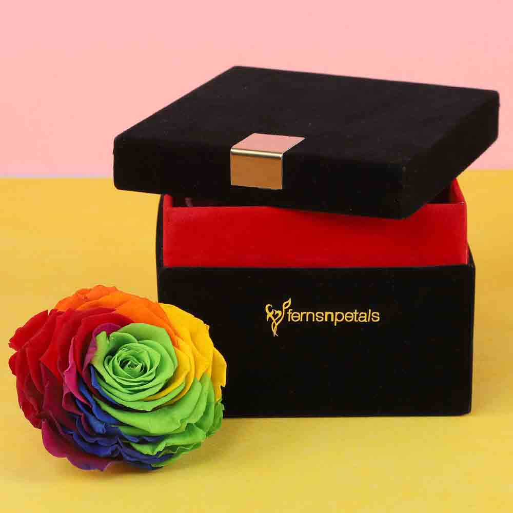 Forever Rainbow Rose In Black Velvet Box Big