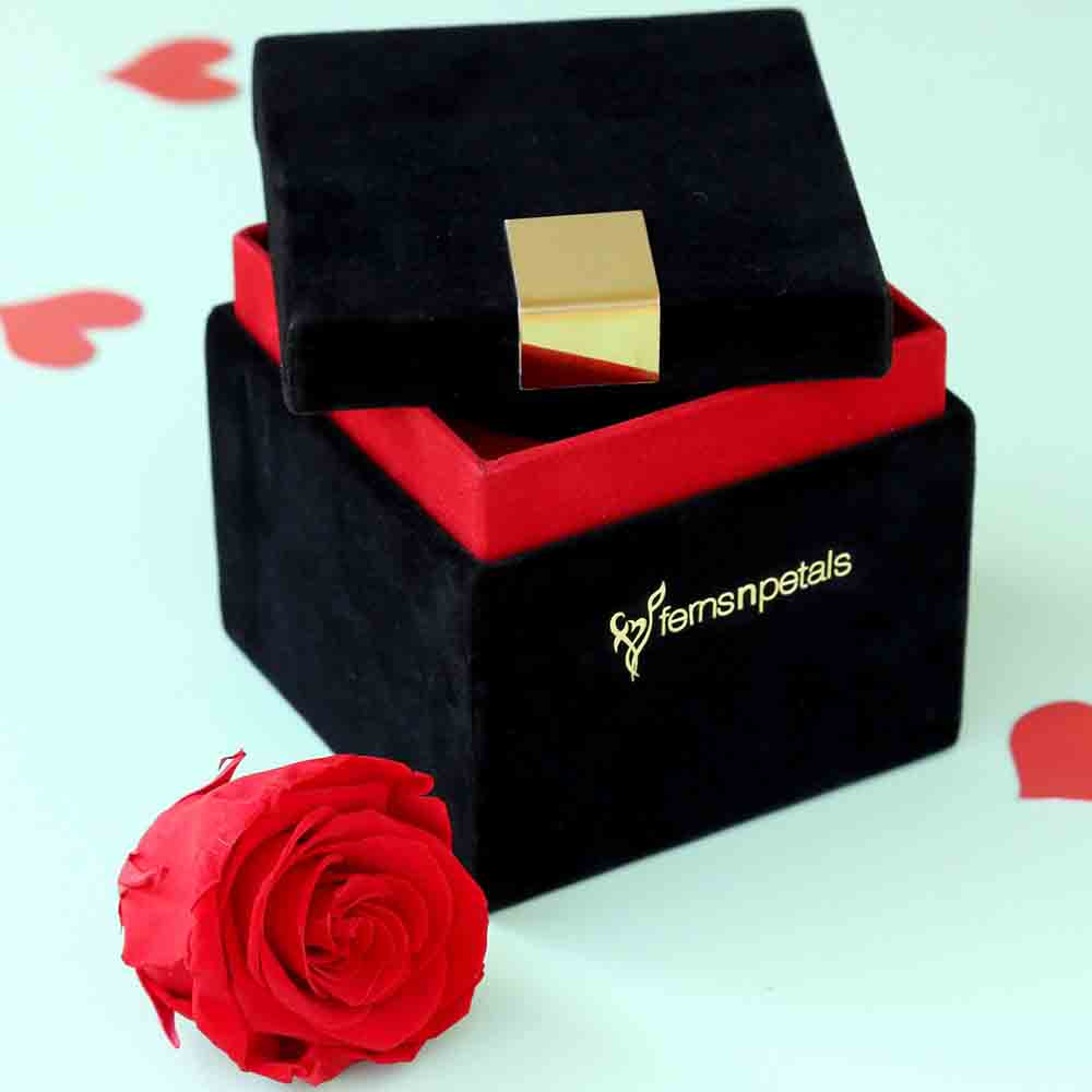 Timeless Forever Red Rose In Velvet Box