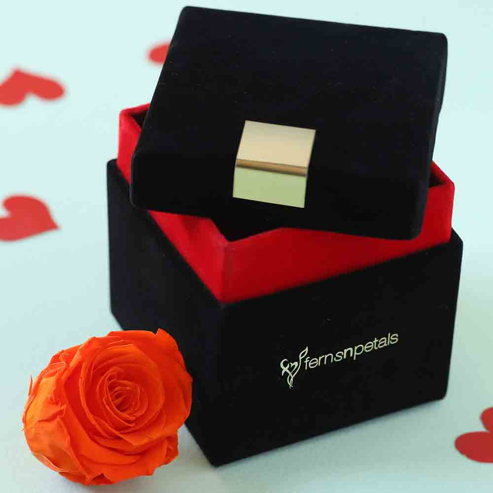 Orange Flame Forever Rose In Velvet Box