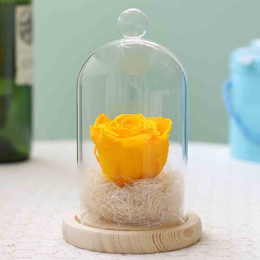 Sunny Yellow Forever Rose In Glass Dome