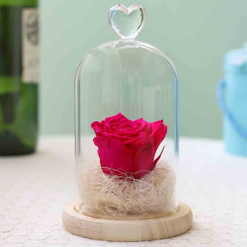 Forever Hot Pink Rose In Glass Dome
