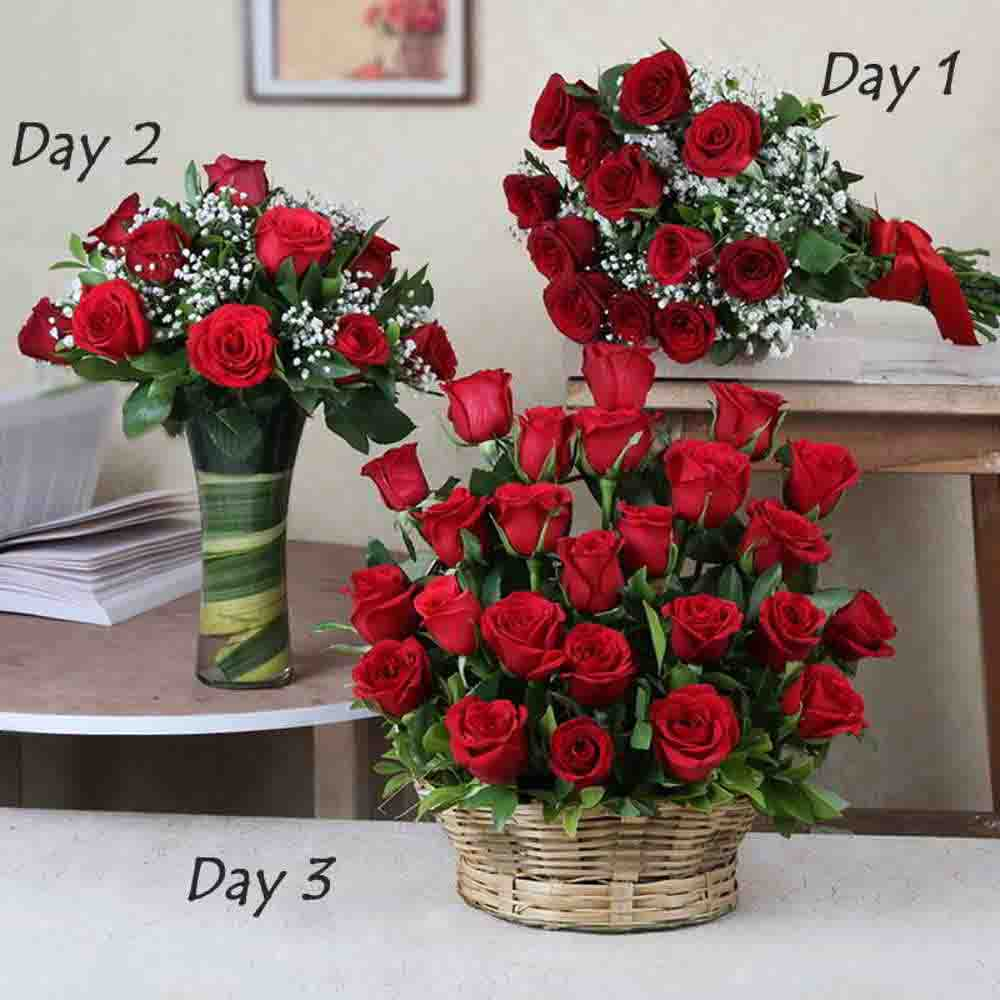 Serenades-Three Days Surprise Gifts Delivery For Valentine