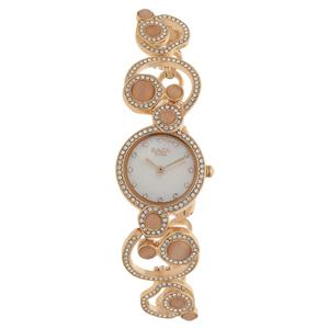 Titan-Titan Mother of Pearl Dial Analog Watch for Women - NH95029WM01J