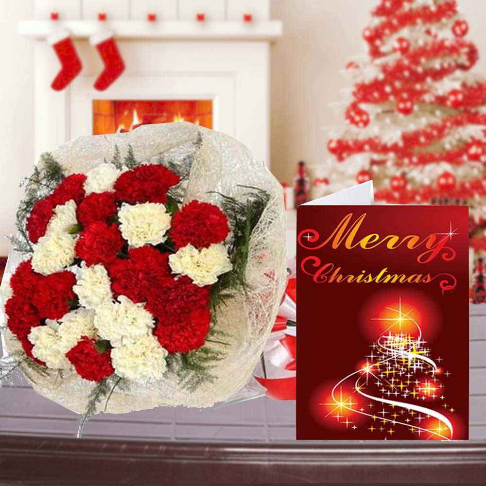 Merry Christmas Card and Carnation Bouquet Combo for Christmas
