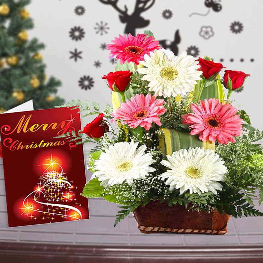 Fresh Flowers-Mix Flower Basket with Merry Christmas Greeting Card